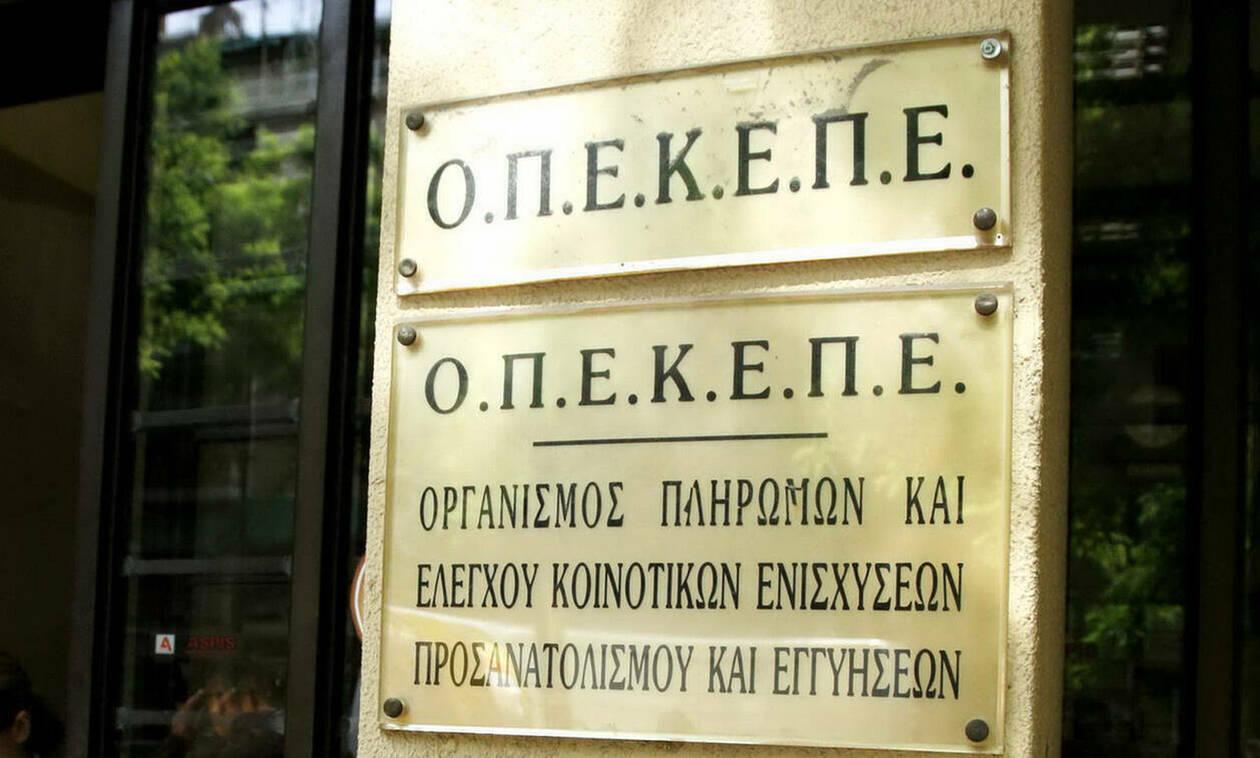 ΟΠΕΚΕΠΕ: Συνεχίζονται οι αιτήσεις για την ενιαία ενίσχυση - Τι πρέπει να προσέξετε
