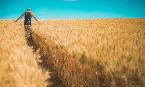 ΕΛΓΑ: Τη Μεγάλη Τρίτη θα δοθούν οι αποζημιώσεις στους αγρότες