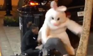 Το πασχαλινό λαγουδάκι νευρίασε και έπαιξε μπουνιές στη μέση του δρόμου (video)
