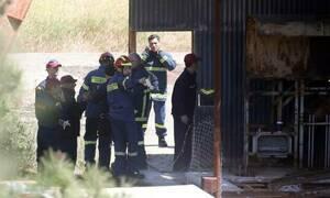 Κύπρος: Τι λέει ο Σύνδεσμος Ψυχολόγων για τα φρικιαστικά εγκλήματα στο Μιτσερό