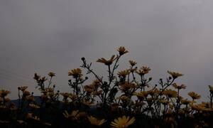 Καιρός Πάσχα 2019 - Αφρικανική σκόνη: Μέχρι πότε θα «σκεπάζει» την Ελλάδα – Πόσο επικίνδυνη είναι