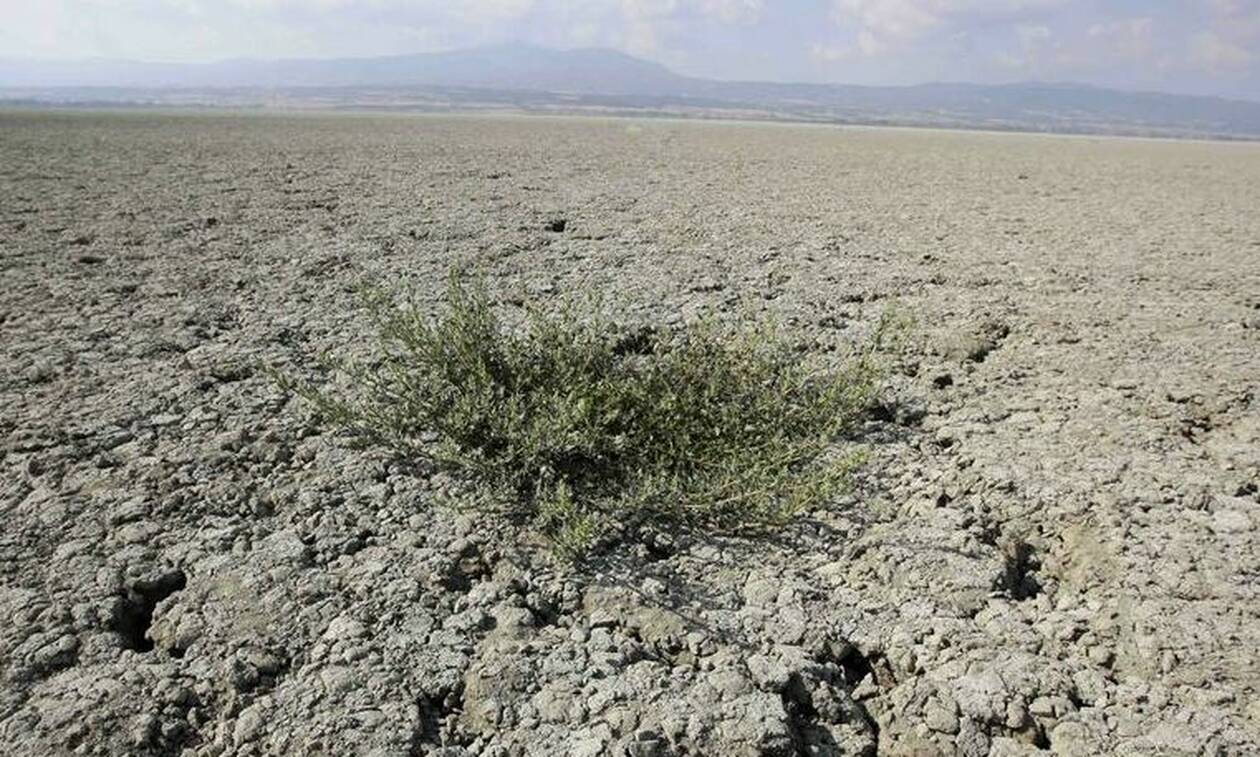 Η ξηρασία απειλεί την Ευρώπη – Τι λένε οι επιστήμονες