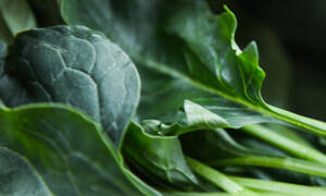 Πράσινα λαχανικά: η ασπίδα για τον οργανισμό σου