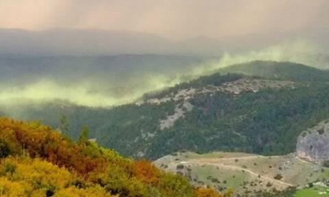 Εντυπωσιακές εικόνες: Το «Βόρειo Σέλας» στον ουρανό της Ελασσόνας (pics)