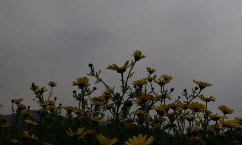 Καιρός: Έρχονται βροχές και καταιγίδες – Δείτε την αναλυτική πρόγνωση (pics)