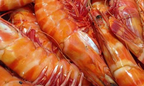 Έπαθαν ΣΟΚ: Δείτε τι βρήκαν μέσα σε γαρίδες (pics)