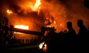 Τραγωδία στο Μάτι: Έχει πάρει φωτιά ο κήπος του Ψινάκη - Στείλτε κάποιον, τα έχει καλά με τα κανάλια