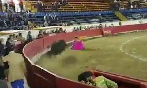 Ταύρος έσπασε το σαγόνι γυναίκας ταυρομάχου (σκληρές εικόνες)