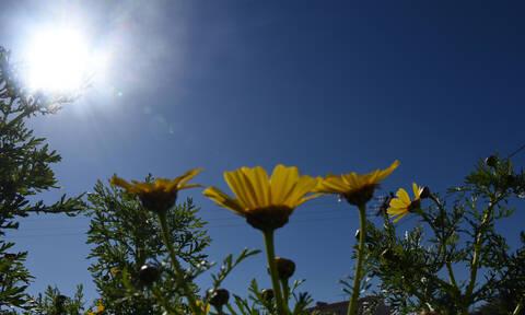 Καιρός: Άνοδος της θερμοκρασίας την Πέμπτη – Σε ποιες περιοχές θα βρέξει (pics)