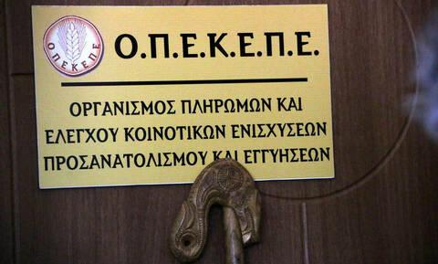 ΟΠΕΚΕΠΕ: Πληρωμές ύψους 3,4 εκατ. ευρώ σε 597 δικαιούχους