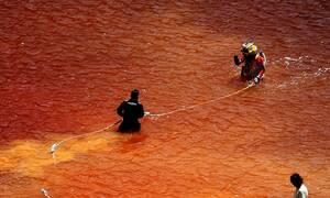 Serial killer - Κύπρος: Η «προφητική» ταινία πίσω από το χαλί που βρέθηκε στη λίμνη