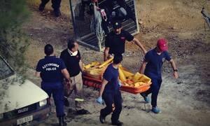 Serial Killer: Στην Κύπρο ιατροδικαστής της Scotland Yard για την νεκροτομή της 8χρονης Έλενας
