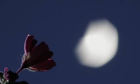 Πανσέληνος Μαΐου: Πότε θα τη δούμε - Γιατί ονομάζεται «Φεγγάρι του λουλουδιού» (pics)