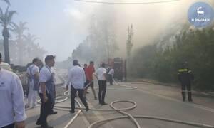 Ρόδος: Φωτιά κοντά σε μεγάλο ξενοδοχείο στο Φαληράκι (pics&vid)