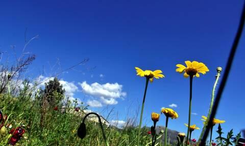 Καιρός: Μετά το χαλάζι... καλοκαίρι – Πότε έρχονται 30άρια (ΧΑΡΤΕΣ)