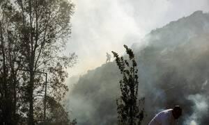 Άργος πυρκαγιά: Σε συναγερμό ισχυρές δυνάμεις της πυροσβεστικής