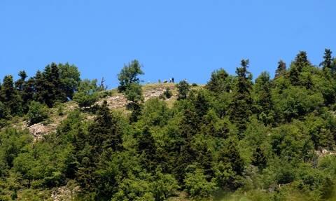 Με ελικόπτερο μεταφέρθηκαν δύο ορειβάτες που είχαν τραυματιστεί στον Όλυμπο
