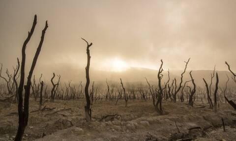 Προειδοποίηση - ΣΟΚ από επιστήμονες: Αυτές οι χώρες κινδυνεύουν με «βιβλική καταστροφή»