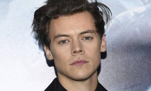 O Harry Styles με πασίγνωστο μοντέλο σε παραλία του Malibu