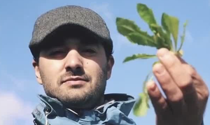 Ο Έλληνας που άφησε το Λονδίνο για να μαζεύει άγρια χόρτα στο χωριό του (video)