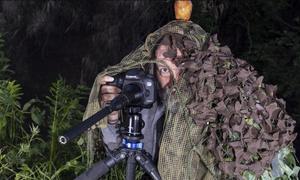 Απίστευτος φωτογράφος! Αναζητά σπάνιο πουλί, κάνει τα πάντα για να το βρει κι εκείνο τελικά...