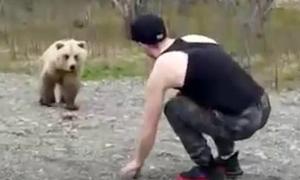 Στην αρκούδα «μαγκιές» δεν χωράνε(video)