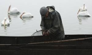 ΣΟΚ στην Πρέβεζα: «Πάγωσαν» οι ψαράδες με αυτό που βγήκε από τη θάλασσα (pics)