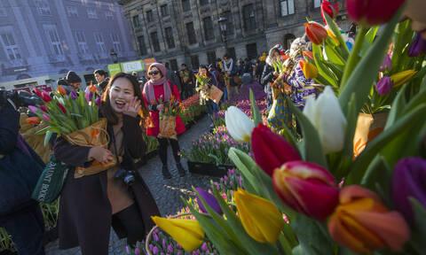 Ο μαζικός τουρισμός «πνίγει» το Άμστερνταμ - «Δε θα γίνουμε Βενετία» διαμηνύουν οι κάτοικοι (vid)