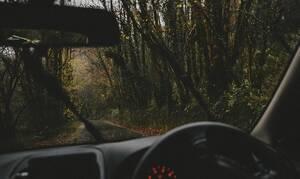 Φλώρινα: Έπαθε ΣΟΚ με αυτό που είδε ξαφνικά στη μέση του δρόμου (pics)