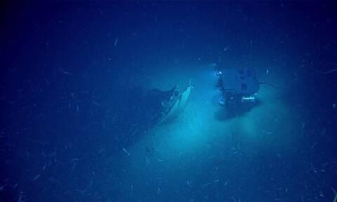 Η απίστευτη ανακάλυψη μισό χιλιόμετρο από την επιφάνεια της θάλασσας (vid)