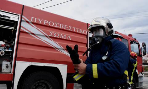 Χανιά: Επιχείρηση διάσωσης 87χρονης από «κομάντο» της Πυροσβεστικής (vid)