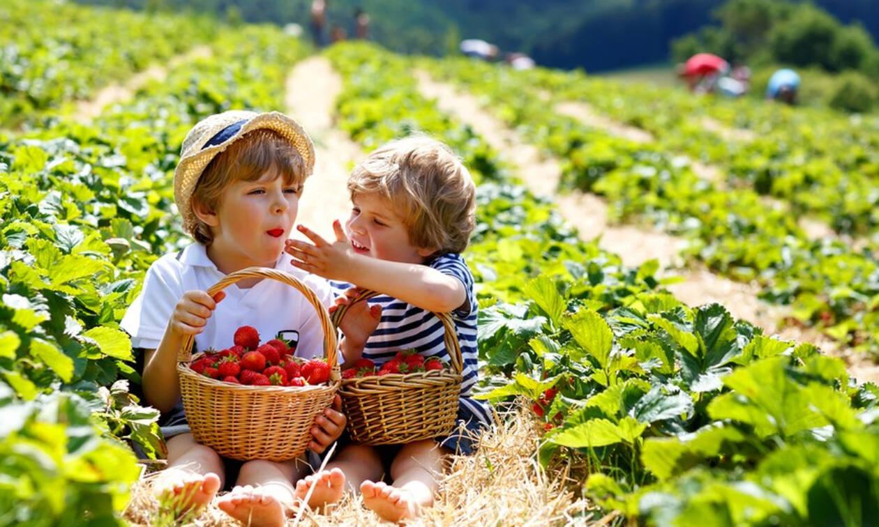 Το «μυστικό» για να τρώνε τα παιδιά σας πιο υγιεινά
