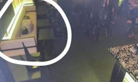 Το αφεντικό τον έπιασε να κοιμάται στη δουλειά - Η αντίδρασή του θα σας εκπλήξει (pics)