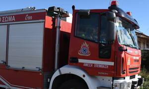 Φωτιά ΤΩΡΑ στις Πλαταιές Βοιωτίας - Ισχυροί άνεμοι πνέουν στην περιοχή