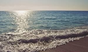 Φρίκη σε ελληνική παραλία: «Πάγωσαν» οι λουόμενοι με αυτό που είδαν (pics)
