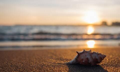 Όσα πρέπει να γνωρίζετε όταν επισκέπτεστε παραλίες - Το κόστος στις οργανωμένες