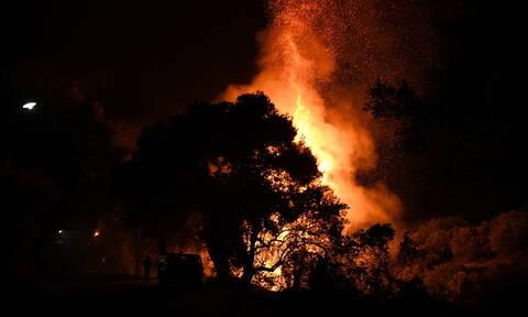Φωτιά τώρα: Σε ύφεση η πυρκαγιά στον Πισσώνα Ευβοίας (ΧΑΡΤΗΣ)