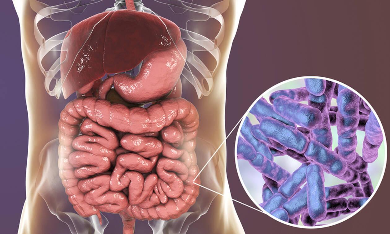 Προβιοτικά: 8 λόγοι που κάνουν καλό στην υγεία