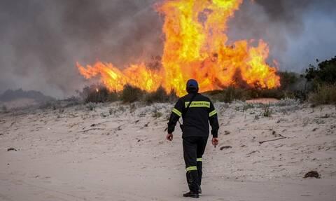 Μεγάλη πυρκαγιά σε δασική έκταση στα Μέγαρα Αττικής