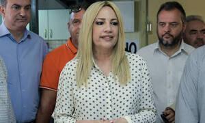 Γεννηματά: Σαφής και κατηγορηματική καταδίκη της Τουρκίας από το Ευρωπαϊκό Συμβούλιο