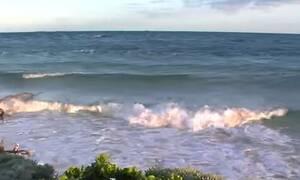 Μπαχάμες: Το νησί με το ελληνικό όνομα που αποτελεί παράδεισο επί γης (vid)