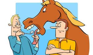 Σε ποιο ζώδιο χαρίζουν γάιδαρο και τον κοιτάει στα δόντια; Ψήφισέ το!