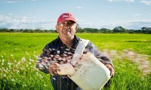 ΟΠΕΚΑ: Aιτήσεις για προγράμματα Αγροτικής Εστίας - Πότε λήγει η προθεσμία