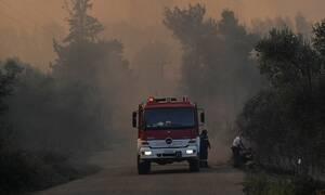 Φωτιά σε δύσβατο σημείο στην Κρήτη