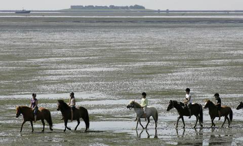 Το νησί των 16 κατοίκων που παλεύει με τη θάλασσα (vid)