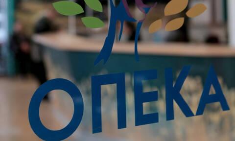 ΟΠΕΚΑ: Παράταση για τις αιτήσεις των προγραμμάτων Αγροτικής Εστίας