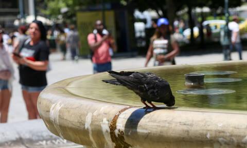 Αυτή η εφαρμογή στο κινητό σας προειδοποιεί για τον καύσωνα στην Αθήνα