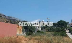 Φωτιά στο Λαγονήσι: Εκκενώθηκαν σπίτια - Διακοπή κυκλοφορίας
