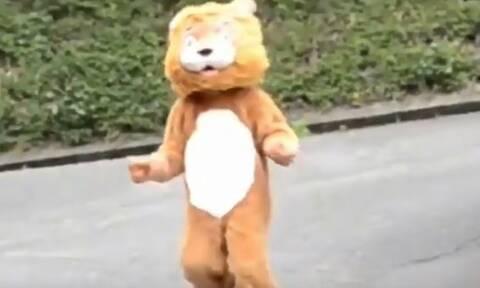 Το λιονταράκι το έσκασε: Η απίστευτη άσκηση ετοιμότητας σε ζωολογικό κήπο που έγινε viral