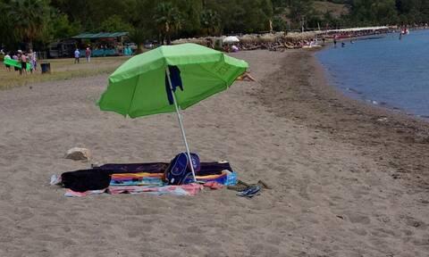 Συναγερμός: Μέδουσα – δολοφόνος τρομοκρατεί τις θάλασσες της Μεσογείου